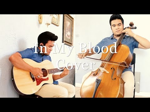 In My Blood Cover - Shawn Mendes - (Guitar/Cello/Piano Cover)