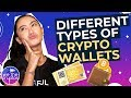 Different Types of Crypto Wallets