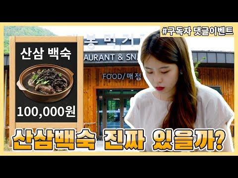[주작맛집] ep. 8 산삼백숙이 실제로 있을까? (feat. D-50 기념 구독자 댓글 이벤트)