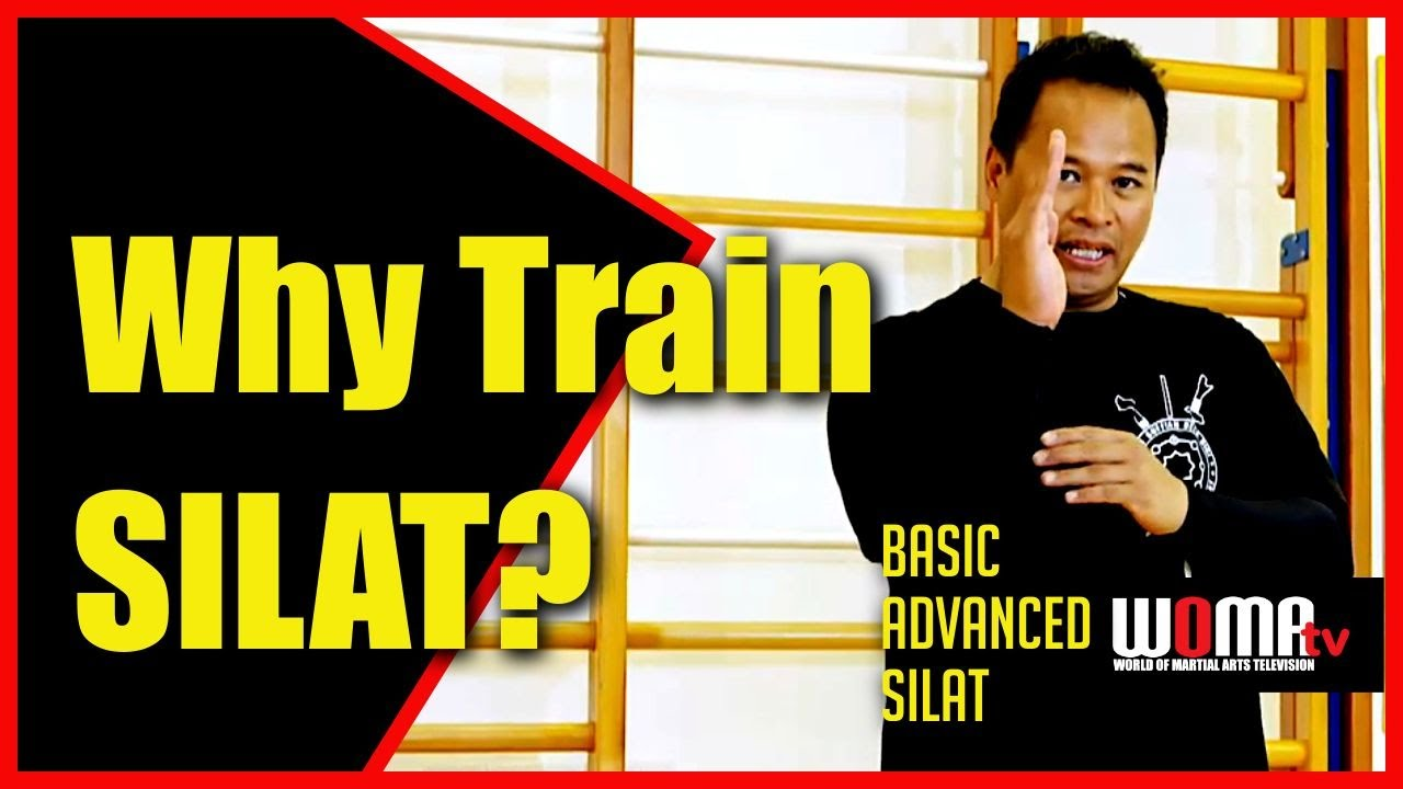 Download Why Train SILAT?