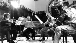 Mozart Qt #13 K173: Allegro (Amadeus Qt)
