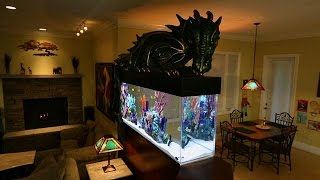 Magical Dragon Fish Tank