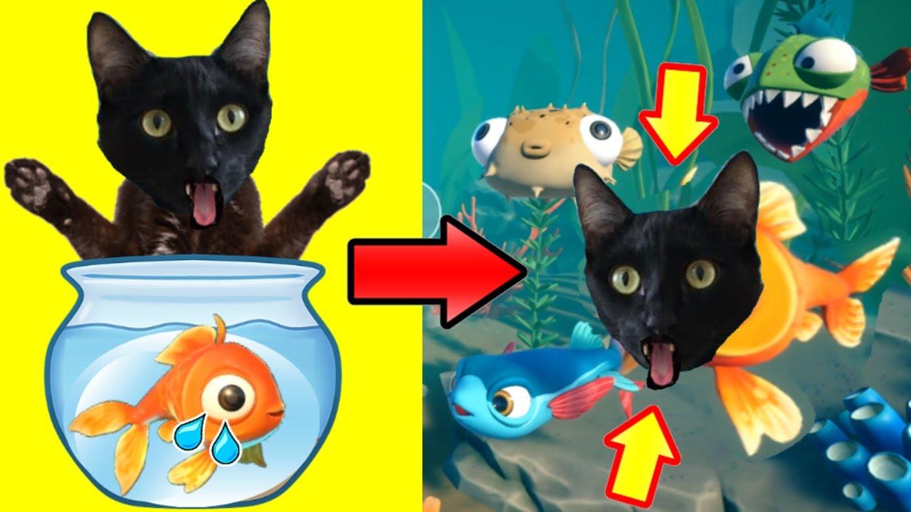 Gato jugando a soy un pez con gatos Luna y Estrella 1 / Videojuego I AM FISH con gatitos