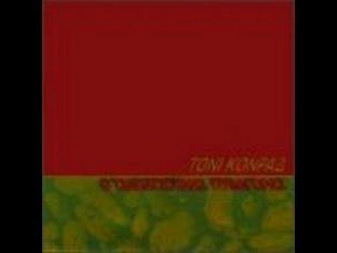Slapping Pythagoras - Tony Conrad (1995) Full album.