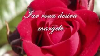 Alexandru Macedonski - Rondelul marilor roze