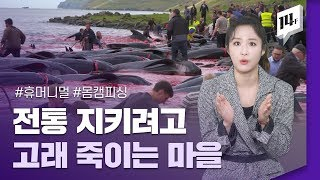 인간과 동물은 공존할 수 있을까? MBC 창사 특집 자연 다큐멘터리 '휴머니멀' / 14F