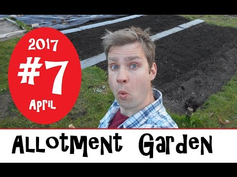 Allotment garden 2017 7 jobs for april youtube for Gardening jobs for april