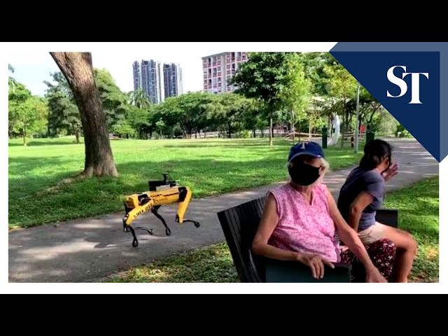 Singapore Deploys Spot Robot To Patrol Parks And Remind People To