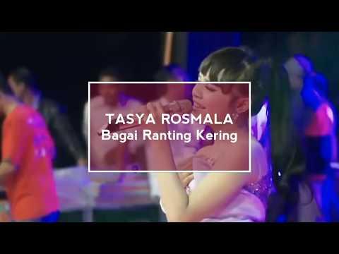Tasya Rosmala - Bagai Ranting Kering   Musik Lirik