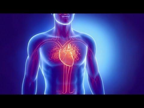 City Walk: Side Effects: Heart Health