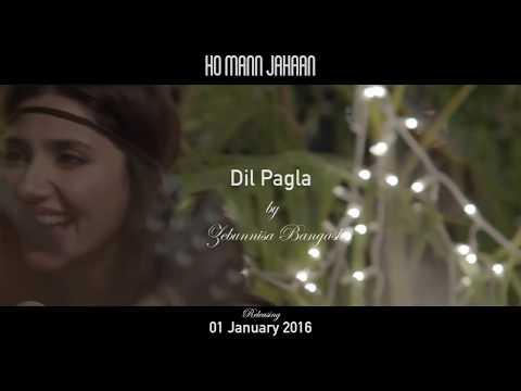 DIL PAGLA – HO MANN JAHAN