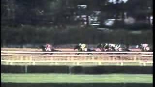 Easy Goer - 1989 Belmont Stakes