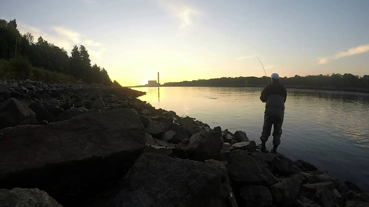 Cape cod canal striped bass fishing 1st light youtube for Cape cod canal fishing report