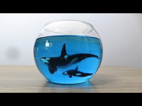 How to Make Orca in Fishbowl | Resin Art | Diorama