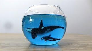How to Make Orca in Fishbowl | Resin Art | Diorama