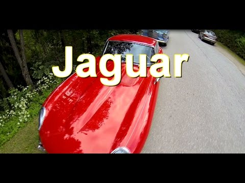 Jaguar: old car 1960