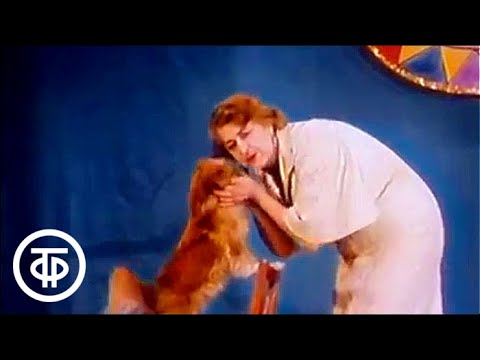 В мире животных с Николаем Дроздовым. Театр зверей им. Дурова | В мире животных (1982)