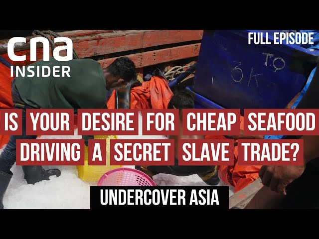 Slavery Aboard Asia's Fishing Vessels   Undercover Asia   Full Episode