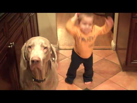 Baby and dog practice new trick simultaneously