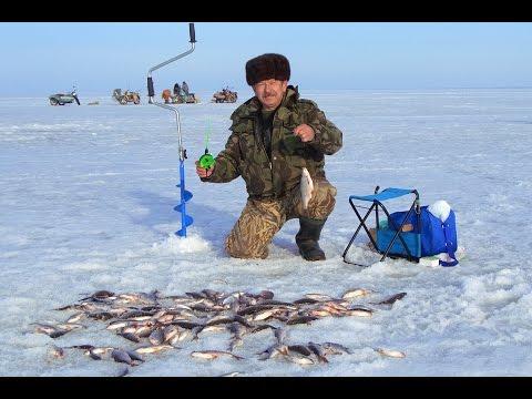 зимния рыбалка волгоградское водохранилище