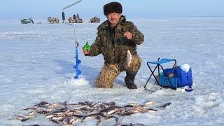 Зимняя рыбалка. Цимлянское водохранилище..