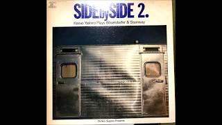 side by side2/Vinyl Handmade Rotary Headshell