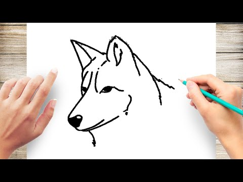 How To Draw A Wolf Head Step By Step