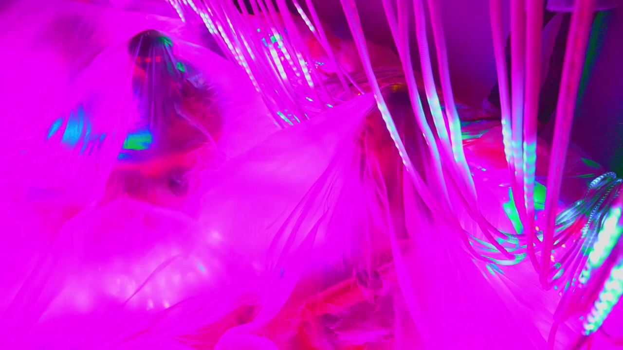 the-flaming-lips-nidgy-nie-never-no-official-music-video-flaminglips