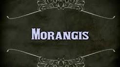 Bien Vivre ma Ville Morangis 2014