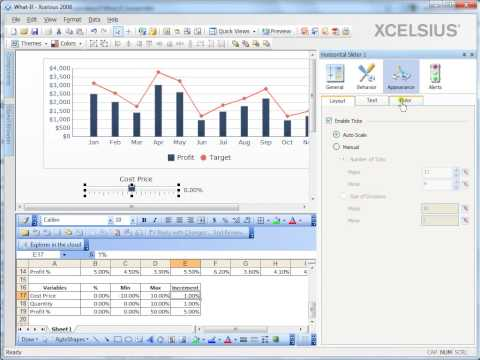 Creating a what if scenario analysis model in Xcelsius