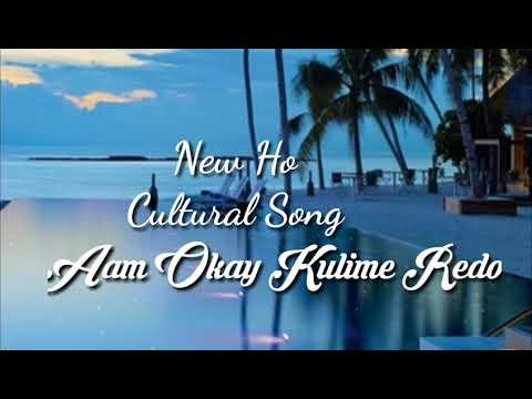 New Ho Munda Cultural Song-2019☆Aam Okay Kulime Redo Rong No Mene....