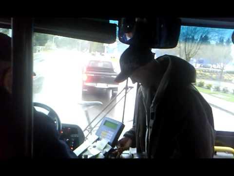 501 pennies for bus fair