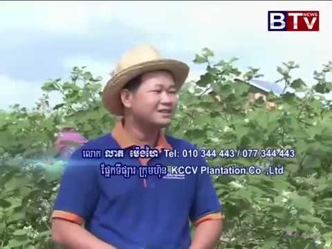 BTV Khmer Agriculture News