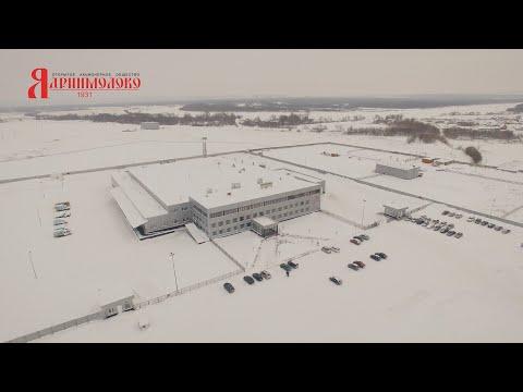 Презентация завода «Ядринмолоко»