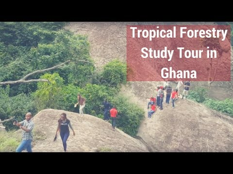 2017 Tropical Forestry Study Tour in Ghana