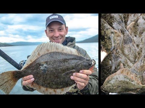 Куча камбалы камбала-лейди на ультралайт! Большое семейное рыболовное путешествие.