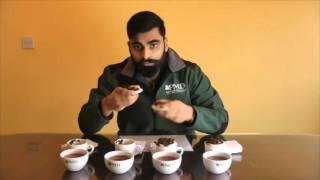 PMD Tea Buyers Club Episode #044 Darjeeling Teas