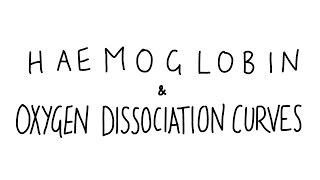 Haemoglobin & Oxygen Dissociation Curves - AS Biology