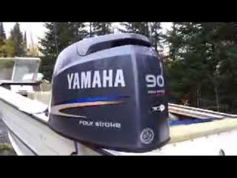 Winterizing Yamaha F90 Do I Need To Flush With
