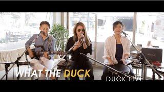 Duck Live 70 - ปลอบ - Hers