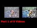 Side By Side Comparison Wolverine Film2digitalMovieMaker Versus  Professional Copy