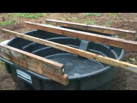 300 Gallon Stock-tank Aquaponics Overview | Farming Seattle