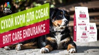 видео Сухой корм для собак Brit premium интернет магазин Украина
