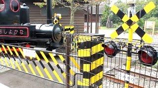 小田原わんぱくランド「なかよし号」踏切・ミニSL | mini train, mini railway crossing thumbnail
