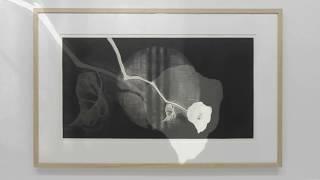 展覧会「鈴木紗綾香」 2014 Oギャラリーeyes [HD] すずきさあや 検索動画 21