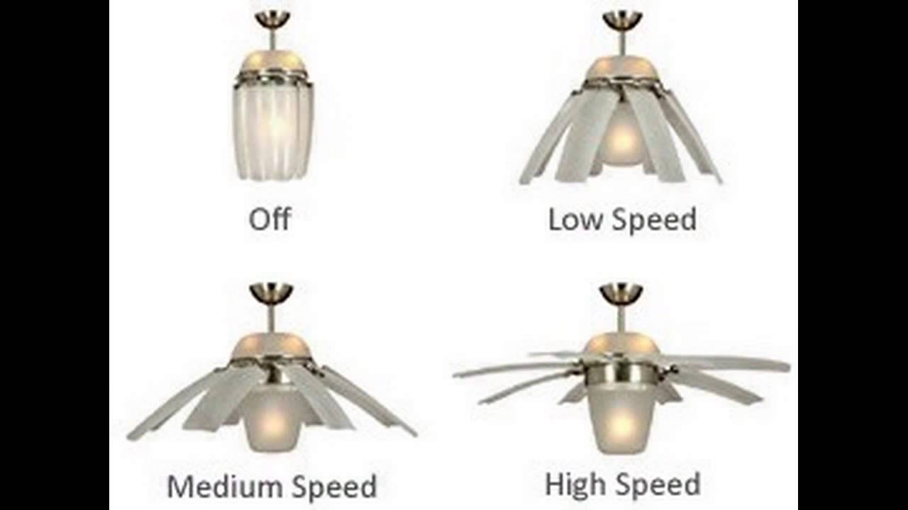 cool and unique ceiling fans - youtube