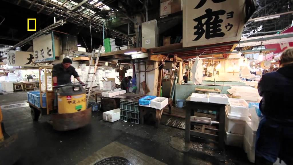 Discovers Tokyo with World Expeditions