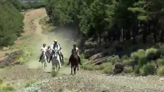 L'Andalousie secrète à cheval