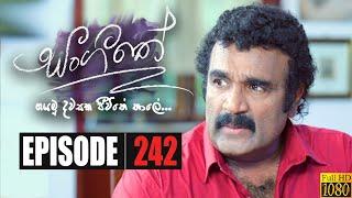 Sangeethe | Episode 242 14th January 2020 Thumbnail