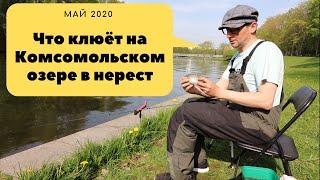 Что клюёт на Комсомольском озере в нерест